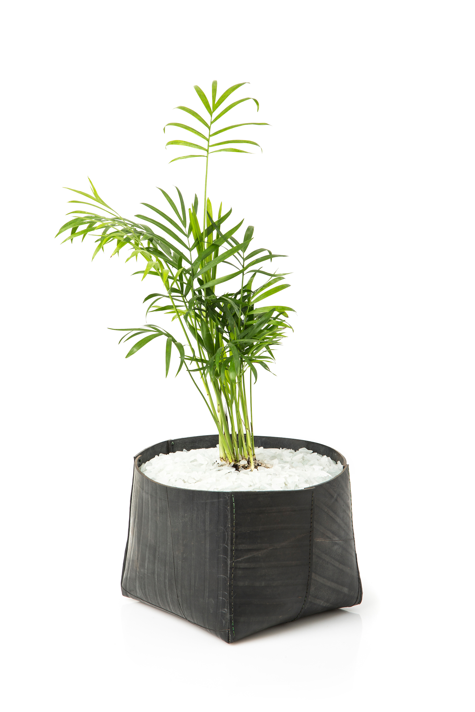 Vea Desk pot