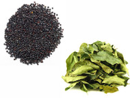 Jalpur Millers Spice Combo Pack -  Black Mustard Seeds 100g - Dried Curry Leaves 50g (2 Pack)