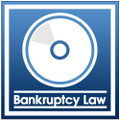 Recent Supreme Court & Other Cases of Interest to the Bankruptcy Practitioner 2017 (CD)