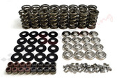 "BTR .685"" Lift Spring Kit w. Titanium Retainers for LS"