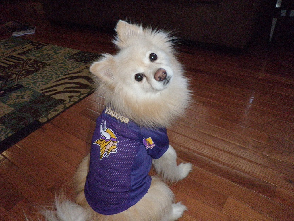 more photos 07e07 4513c minnesota vikings jersey for dogs