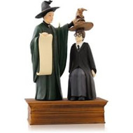 2014 Harry Potter - The Sorting Hat