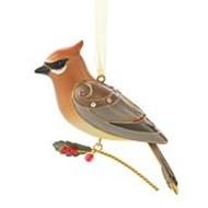 2013 Beauty Of Birds #9 - Cedar Waxwing