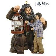 2009 Harry Potter - Harry Happy Birthday