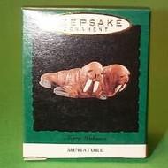 1995 Noahs Ark - Merry Walruses