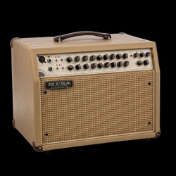 Mesa/Boogie Rosette 300 Acoustic Guitar Combo
