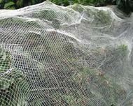 Bird Netting 4 Meteres x 10 Meters