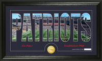New England Patriots Silhouette Bronze Coin Panoramic Photo Mint