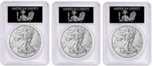 2018-W Burnished Silver Eagle SP70 PCGS FDOI 3-Coin City Set Liberty label *Pop 40*