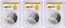 2018-S Proof Silver Eagle PR70 PCGS 3-Coin City set PR70 PCGS FDOI Den, Phili, DC Cleveland Art Deco