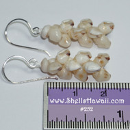 Momi  pikake style shell earrings #252