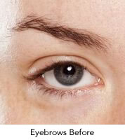 premier-pigments-eyebrows-before.jpg