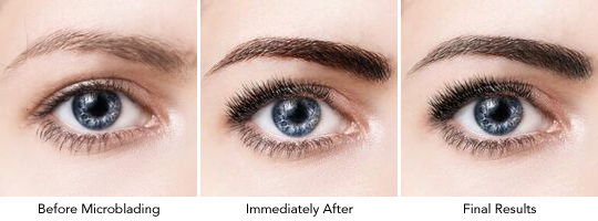premier-pigments-microblading-results.jpg