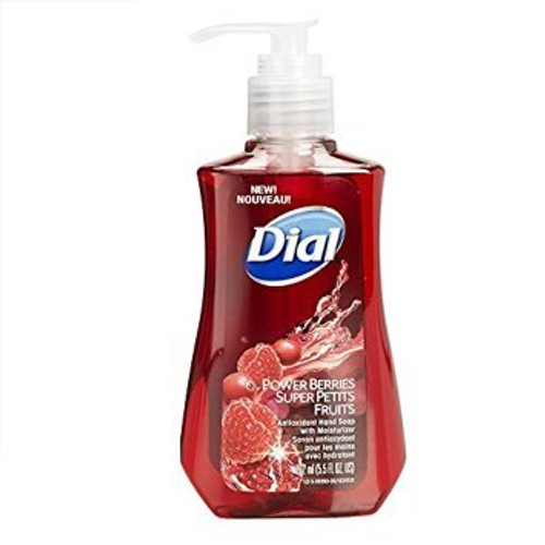 Dial Liquid Hand Soap with Moisturizer Power Berries Buy Online In Pakistan Best Price Original Product