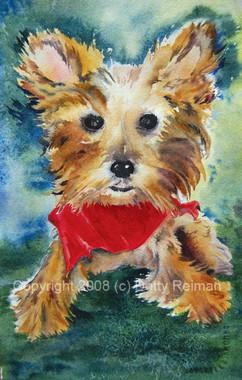 Terrier Watercolor Portrait by Dotty Reiman