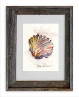 8 x 10 Rainbow Shell Wall Art Print by Dotty Reiman in an 11 x 14 inch rustic barn wood frame