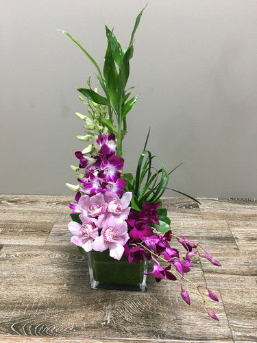 Lavender Crush Premium showcases purple dendrobium orchids, pink cymbidium and lucky bamboo and foliage in a glass cube hand-designed by Palace Florists