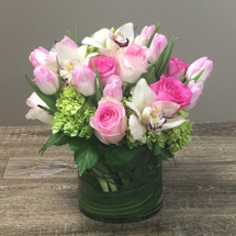 Sugar and spice is filled with pink roses, cymbidium orchids, green hydrangea and pink tulips with swirled bear grass in a glass cylinder in Washington DC, Palace Florists