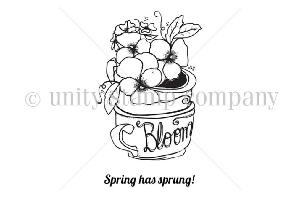 Spring & Bloom