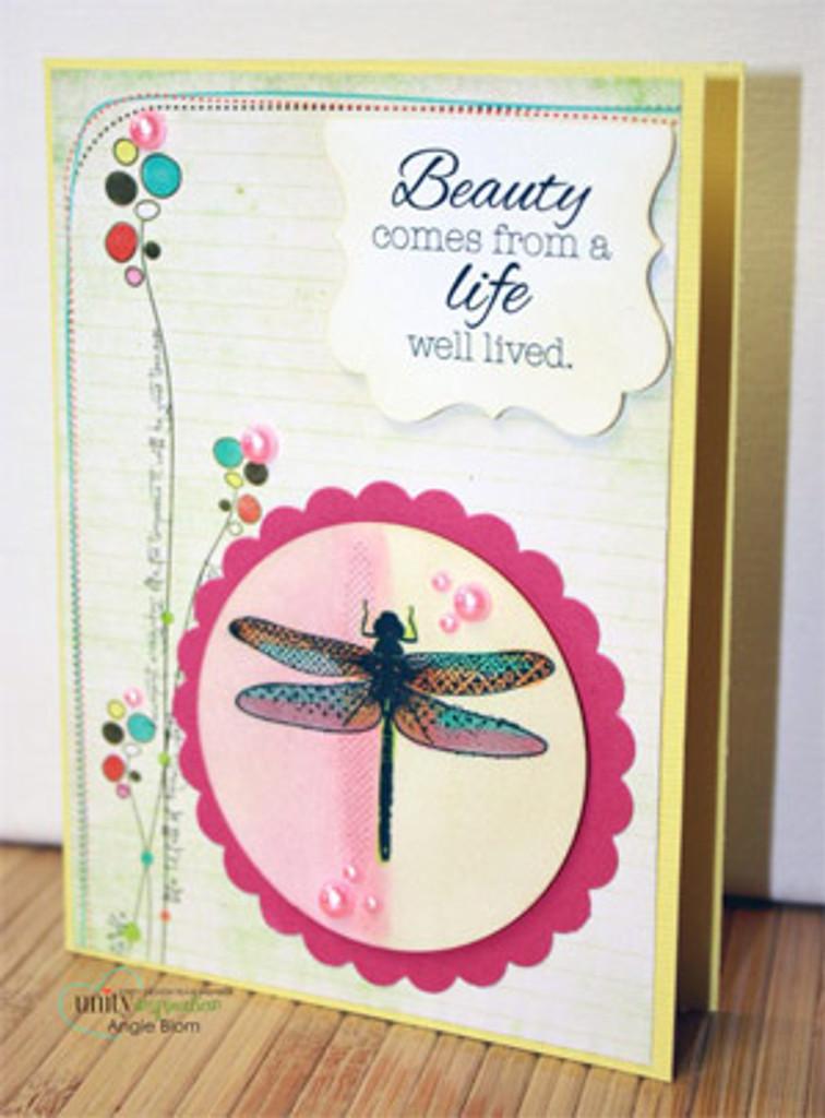 Dragon Fly of Beauty