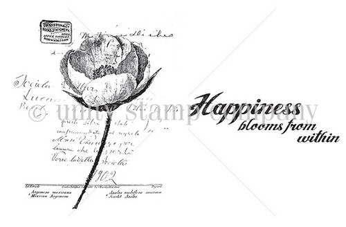 Happiness Blooms {lol 6/17}