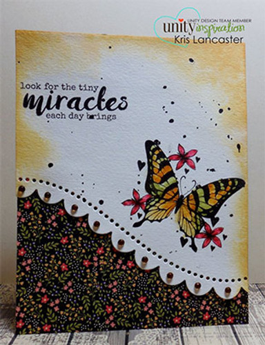 New Fluttering Miracles