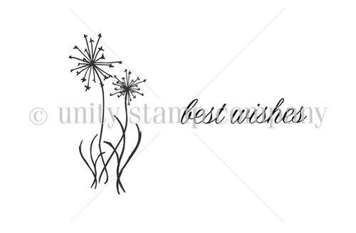Wish for the Best