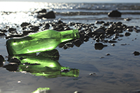 Green bottle on beach that will become sea glass