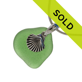Green Sea Glass With Sterling Shell Charm - Solid Sterling CHAIN INCLUDED