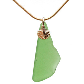 Found green sea glass is combined on a hand cast bail presented and finished with a 14K  gold filled shell on an 18 Inch 14K Goldfilled snake chain.