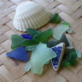 Sea Glass Starter Kit In Shell #3 (LOT1606)