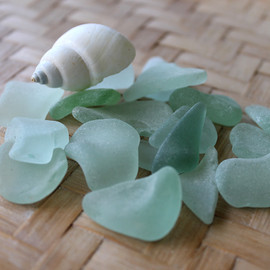 All top quality seafoam sea glass pieces with a shell. Perfect for jewelry or display. These are the EXACT pieces you will receive!