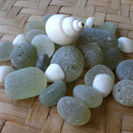 Pure white and off white sea glass with shell mixture. Perfect for jewelry or display. These are the EXACT pieces you will receive!