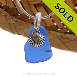 A smaller piece of Cobalt Blue Certified Genuine Sea Glass in a Sterling Necklace with a Shell Charm. Sorry this Sea Glass Necklace HAS BEEN SOLD!