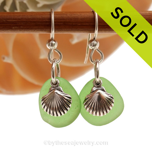 Small but perfect beach found green sea glass pieces are set with solid sterling sea shell charms and are presented on sterling silver fishook earrings. SOLD - Sorry these Sea Glass Earrings are NO LONGER AVAILABLE!