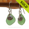 A simple pair of genuine green sea glass earrings with sterling shell charms in a lightweight simple setting.