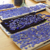 We meticulously sort though 1000's of piece of natural beach found blue sea glass to find you the most perfect pairs!