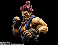 S.H.Figuarts Akuma Action Figure (Completed)