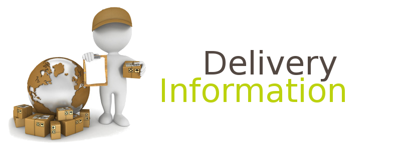 Delivery Man Delivery Information Graphic