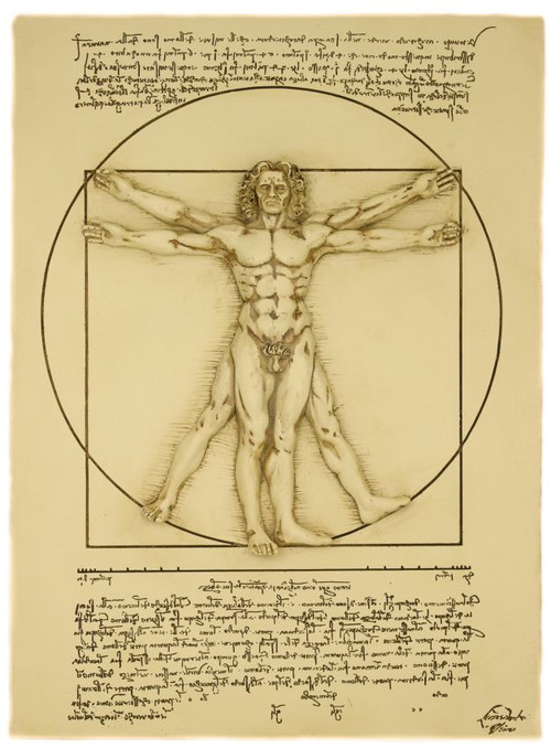 what is vitruvian man