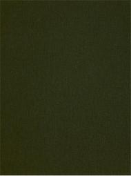Jefferson Linen 245 Peat Moss Linen Fabric