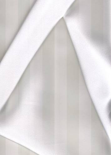 White Silk Charmeuse Fabric