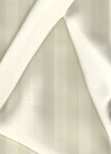 Ivory Silk Charmeuse Fabric