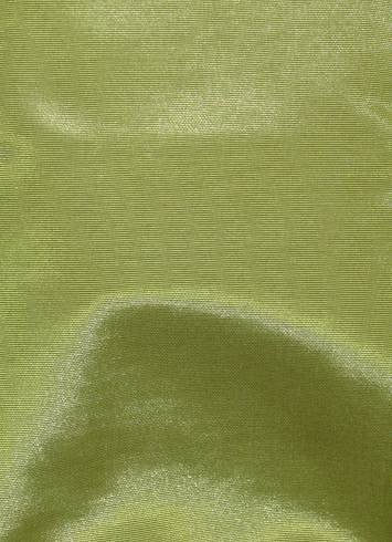 Pea Green Bengaline