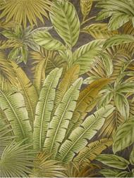 Bahamian Breeze Fossil