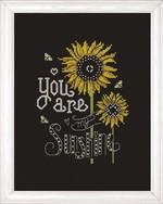 Sunshine Chalkboard Cross Stitch Kit by Design Works
