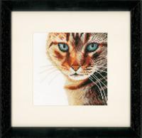 Cat Close Up Cross Stitch Kit by Lanarte