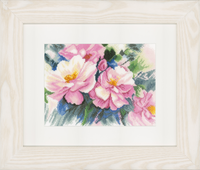 Counted Cross Stitch Kit: Beautiful Roses (Evenweave)