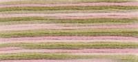 4500  - DMC Coloris Stranded Thread Art 517