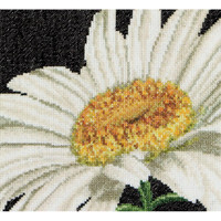 Marguerite Daisy Cross Stitch Kit by Thea Gouverneur